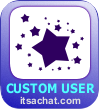 The Custom User